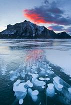 Frozen methane bubbles in winter, Abraham Lake, Canadian Rocky Mountains, Alberta, Canada