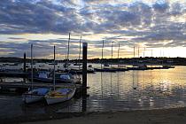 Boats in harbour at sunset, Bembridge Harbour, Bembridge, Isle of Wight, England, june  -  Marcus Webb/ FLPA