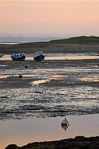 Bembridge Harbour on the Isle of Wight, Hampshire, England  -  Adam Burton/ npl