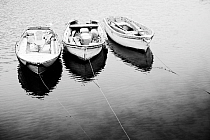 Black and white image of three punts, Mevagissey, Cornwall, England, January.