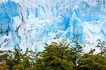 Perito Moreno Glacier, Patagonia, Southern Argentina. January 2014.