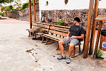 Galapagos sealion (Zalophus californianus wollebaeki) and man on benches. San Cristobal, Galapagos. Ecuador, November 2013.