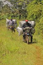 Kalenjin men carrying charcoal on motorbike, Kenya, July