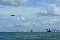 Construction of Hong Kong International Airport, Lantau a big threat for the Indo-Pacific humpback dolphin (Sousa chinensis) western side of Lantau Island, Hong Kong, China.