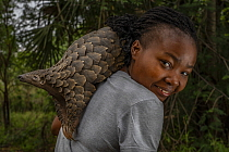 Mozambican wildlife veterinarian Mercia Angela on her daily walk with Boogli, a female Cape pangolin confiscated as infant by Gorongosa's law enforcement team. Boogli's mother had already been...